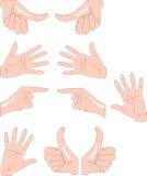 руки Стоковая Фотография RF