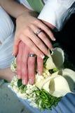 руки groom невесты Стоковая Фотография RF