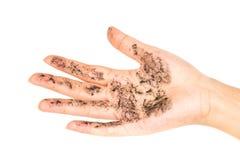 Руки ` s дамы на белой предпосылке Стоковая Фотография RF