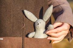 Руки ` s женщины держа кролика игрушки Стоковые Изображения