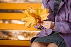 Руки ` s женщины с букетом листьев желтого цвета и апельсина в осени паркуют на запачканной предпосылке Стоковая Фотография