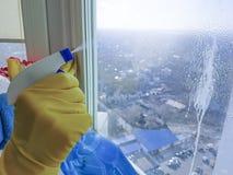 Руки ` s женщин моют окно, очищая стоковое изображение rf