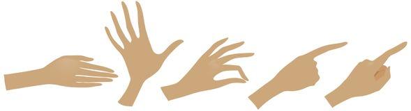 Руки vector комплект Иллюстрация штока