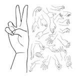 Руки vector установленная часть 1 Иллюстрация вектора