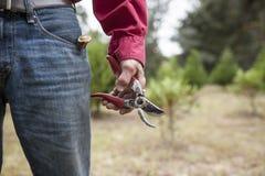 Руки Weathere держа подрезая ножницы Стоковое Изображение RF