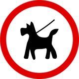 руководство содержания собаки Стоковые Фотографии RF