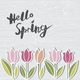 Рукописная современная весна литерности здравствуйте! на деревянной имитационной текстурированной предпосылке Стоковые Фото