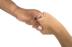 Рукопожатие изолированное на белизне Стоковая Фотография