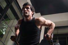 рукоятка работая мышцы человека Стоковое Изображение RF