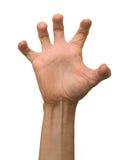 рукоятка Стоковые Фото