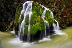 Румыния большинств красивый водопад, водопад Bigar, природный парк Cheile Nerei Стоковое фото RF