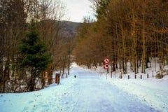 Румынские холмы Стоковая Фотография