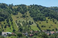 Румынский ландшафт лета Стоковое Изображение