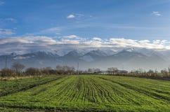 Румынский ландшафт прикарпатских гор Стоковое Изображение RF