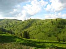 Румынский ландшафт Стоковая Фотография