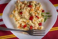 Румынский традиционный салат Boeuf Стоковое фото RF