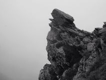 Румынский утес - пасмурный волк Стоковое Изображение RF