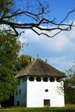 румын красивейшей дома старый Стоковые Изображения