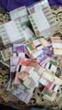 Рупии нового настоящего примечания пакистанские Стоковое Изображение