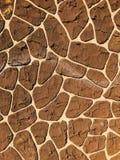 Русая каменная стена инкрустированная с камешком темного коричневого цвета Стоковые Фотографии RF
