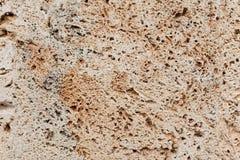 Русая текстура камня детали стоковое фото