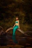 Русалка девушки в болоте Стоковое фото RF