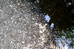 Русло реки с камешками стоковое фото rf