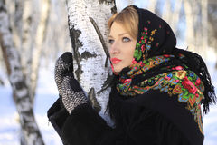 Русская зима Стоковые Изображения
