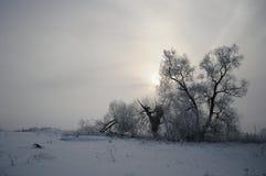 Русская зима 2 Стоковое Изображение RF