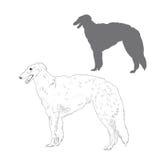 Русская иллюстрация wolfhound Стоковое Изображение