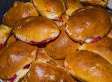 Русские пироги пирожка стоковые фото