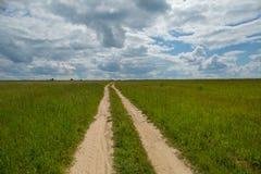 Русский летний день поля стоковые изображения