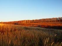 русский ландшафта осени Стоковое Изображение RF
