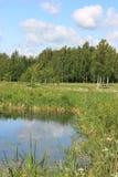 русский ландшафта Стоковая Фотография
