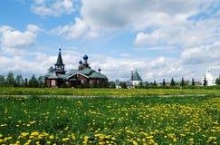 Русский ландшафт с одуванчиками Стоковая Фотография