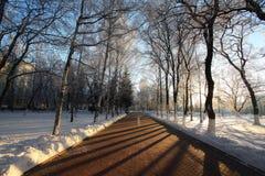 Русский маленький город ландшафта зимы Стоковые Фото