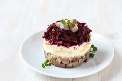 Русский салат сельдей Стоковая Фотография RF
