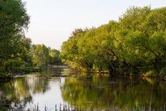 Русский сельский ландшафт Стоковая Фотография RF