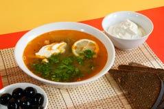 русский суп solyanka традиционный Стоковые Изображения RF