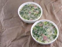 Русский холодный овощной суп на основании югурта (кисл-молока) стоковые изображения rf