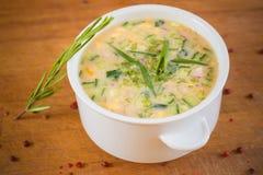 Русский холодный овощной суп на югурте, кисл-молоке стоковое изображение rf