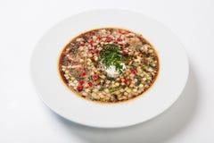 Русский холодный овощной суп на югурте, основании кисл-молока - okroshka стоковые фото