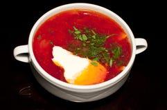 Русский borscht Стоковая Фотография RF