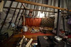 Русское ледовитое аборигенное, 18/5000 маршируя домой - приятель Стоковая Фотография