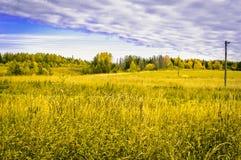 Русское поле Стоковое Фото