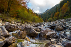 Русло реки утеса в горных вершинах осени Стоковые Фото