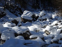 Русло реки Snowy Стоковое Фото