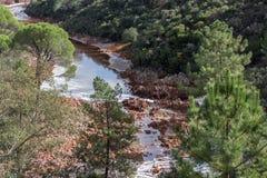 Русло реки Tinto, Уэльва, Андалусия, Испания Стоковые Изображения RF