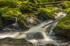 Ручеек горы Стоковые Фотографии RF