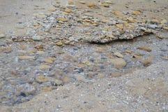Ручеек на пляже Стоковые Фото